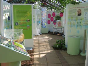 DNA display in Conservatory 22 April 2005