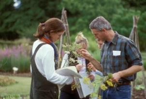 Plant Systematics, 2002