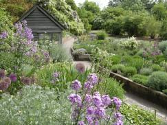 Scented Garden by Juliet Day
