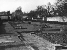 The Old Winter Garden, 1954